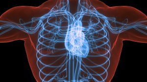 Eliquis is the most effective anticoagulant medication currently prescribed for patients with atrial fibrillation